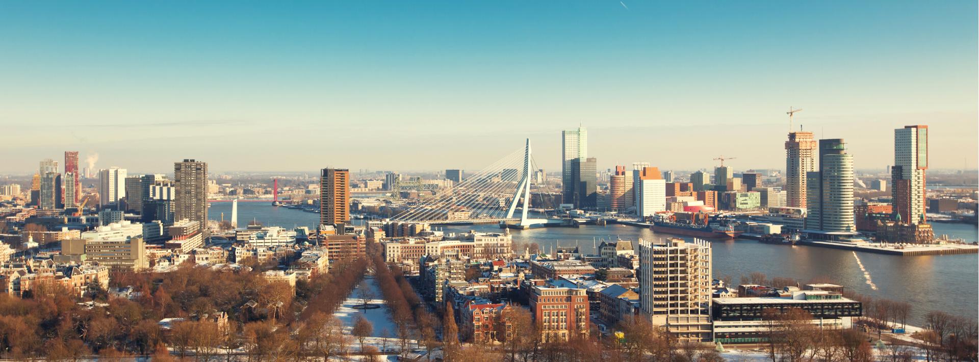 Rotterdam Consultancy