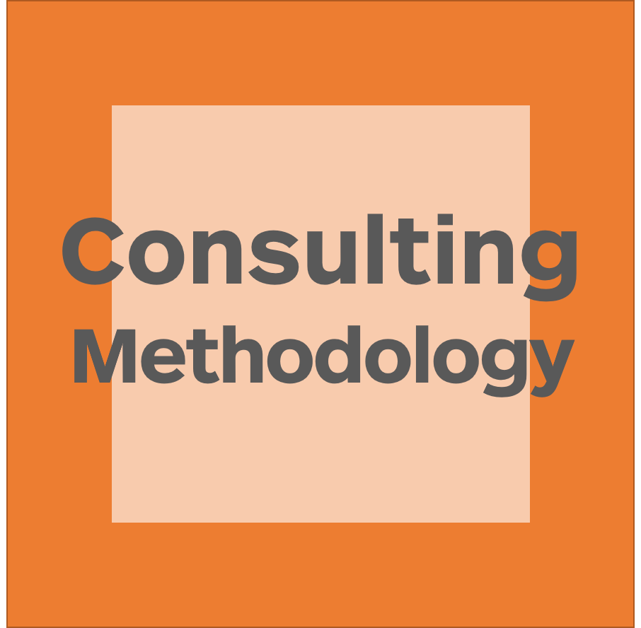 Consulting Methodology logo