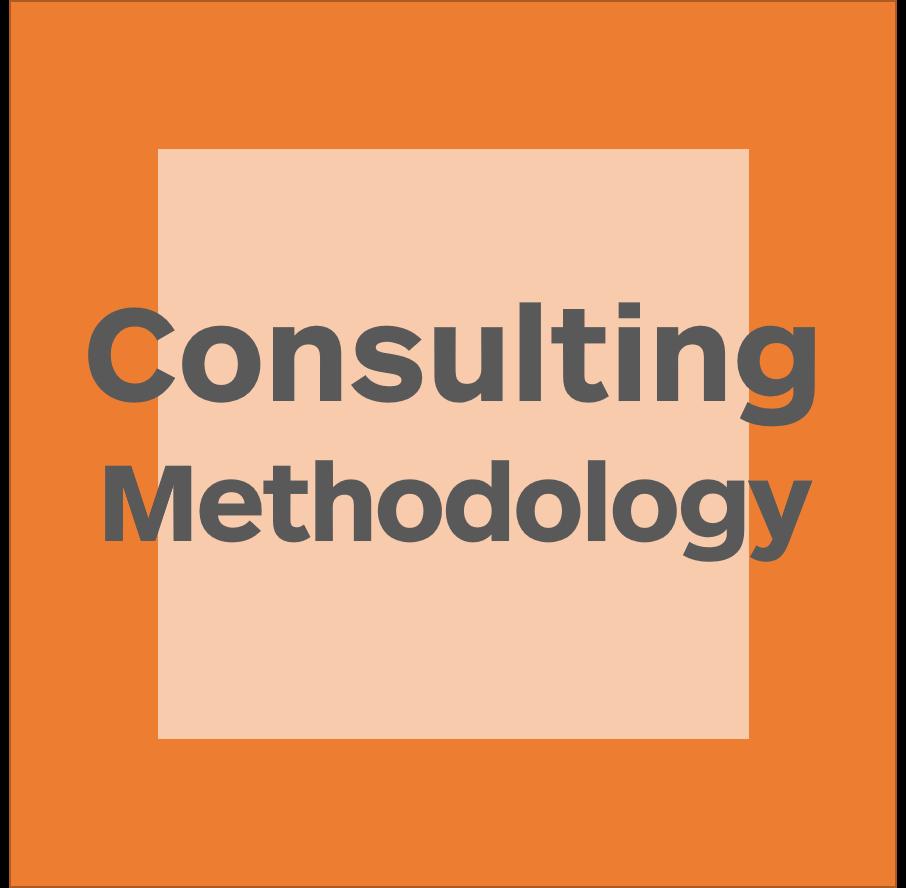 Consulting Methodology logo